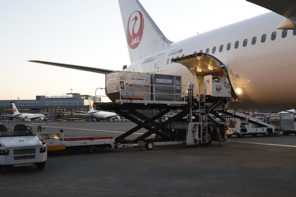 Japan Airlines Cargo